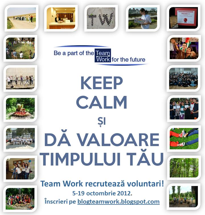 tw recrutare 2012